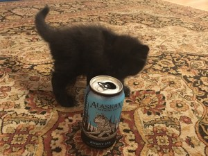 Kitty and beer