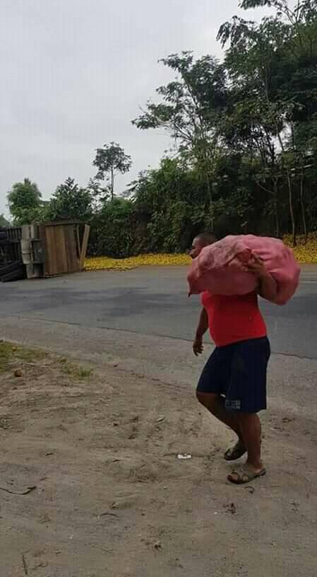 Vecinos roban naranjas luego que camión volcó en Izabal