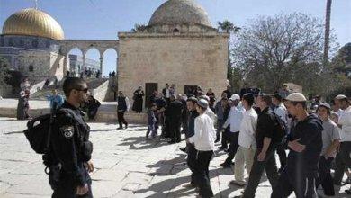صورة عشرات المستوطنين يقتحمون المسجد الأقصى المبارك