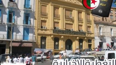 صورة أصداء المواطنين حول مراجعة الدستور