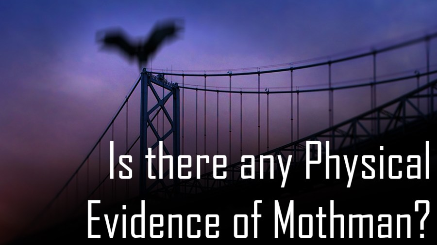 Is There Any Physical Evidence of Mothman? w Lon Strickler