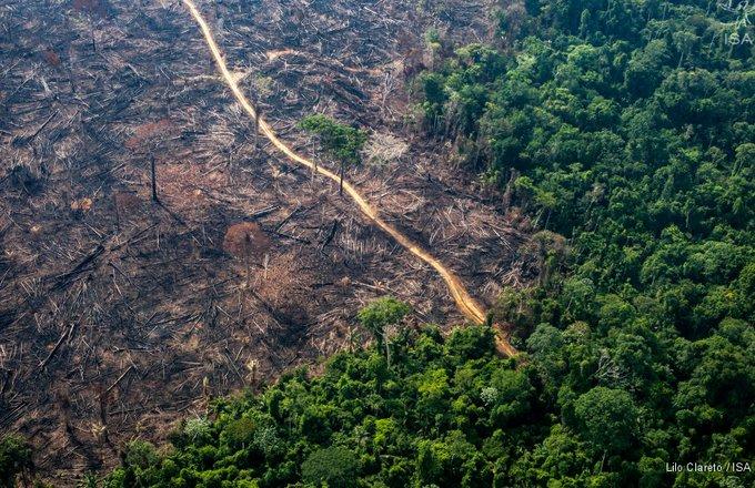 CON CONCIERTO DE NAVIDAD, EL VATICANO RECAUDARÁ FONDOS PARA RECUPERAR EL AMAZONAS