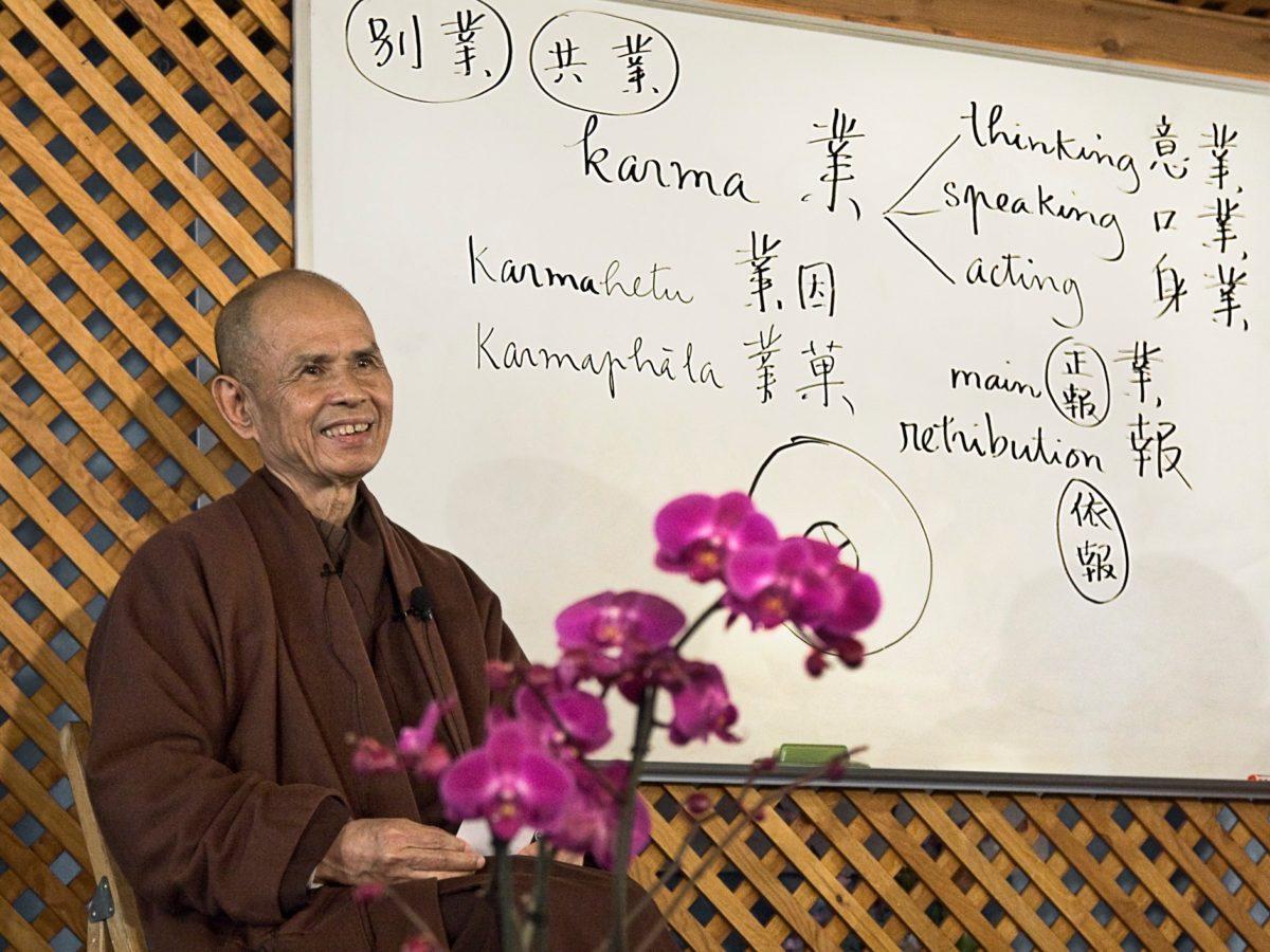 Thich Nath Hanh. Perché karma differenti? Karma, 2