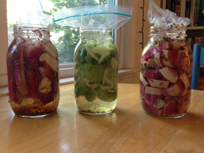 Pickles, September edition