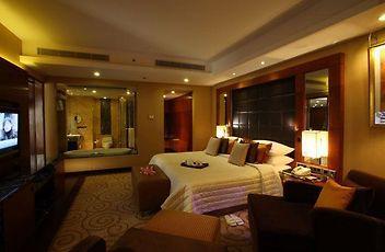 Radisson Blu Plaza Delhi Hotel New Delhi