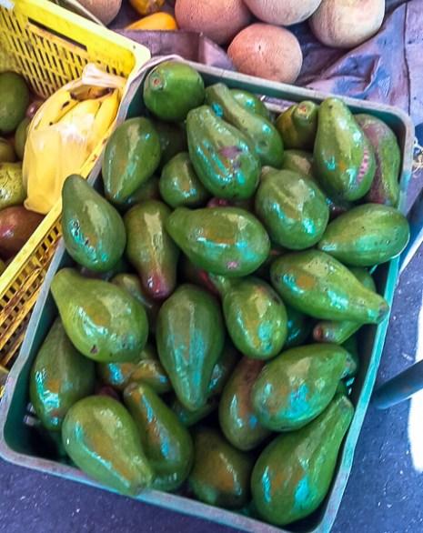 Avocados 1-45