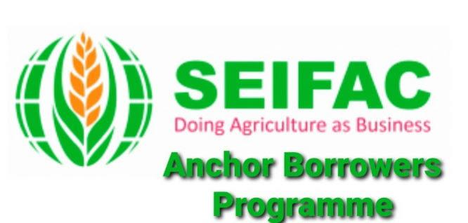 Reason SEIFAC Loan Disbursement is Delay