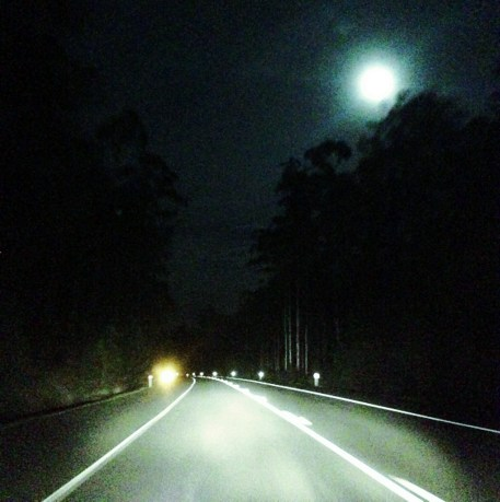 On the road through a scary forest, guided by the moon...