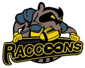 RACCOONS IN THE FOOTBALL!