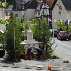 Tannenbäume in Leubsdorf