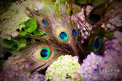 Peacock themed wedding - Raduban Photography