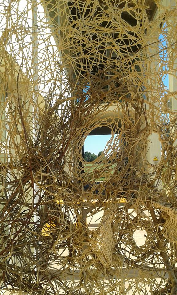 Spiare la terra/LAAI di Antonella De Nisco