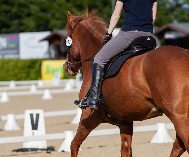 The Annual Devon Horse Show Returns May 23