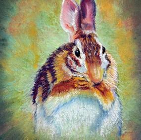 A Secretive Hare