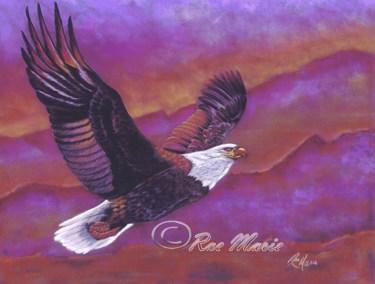 Eagle's Sunset