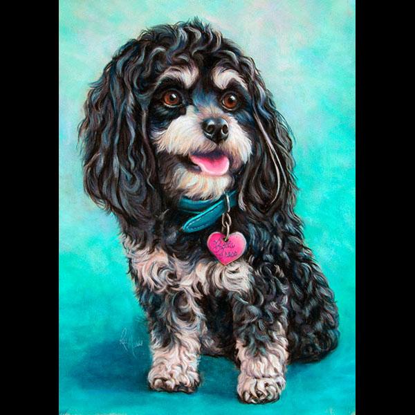 pastel-pet-portrait-by-rae-marie-bellagrace-cavapoo-dog
