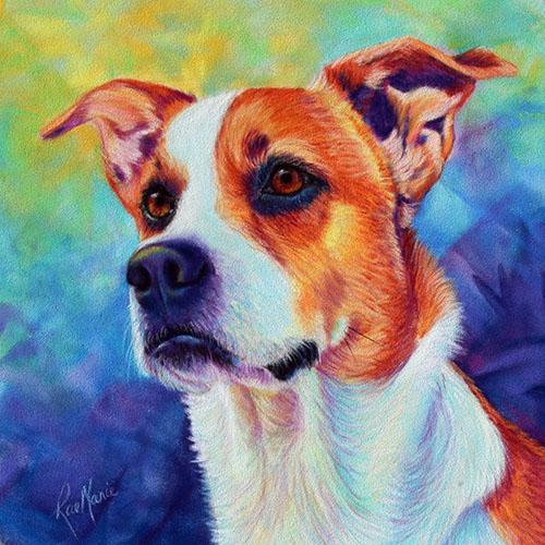 pastel-pet-portrait-by-rae-marie-dog