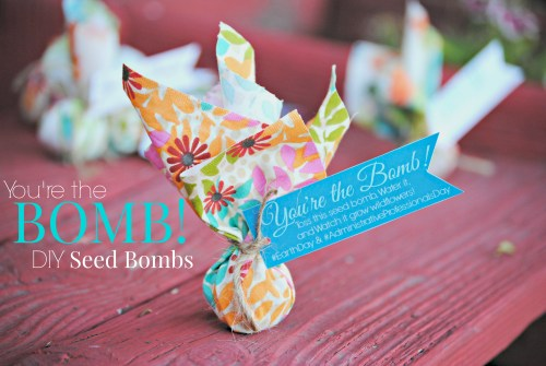 You're the Bomb! DIY Seed Bombs // Administrative Professionals Day // Co-Worker Gift for Administrative Professionals Day