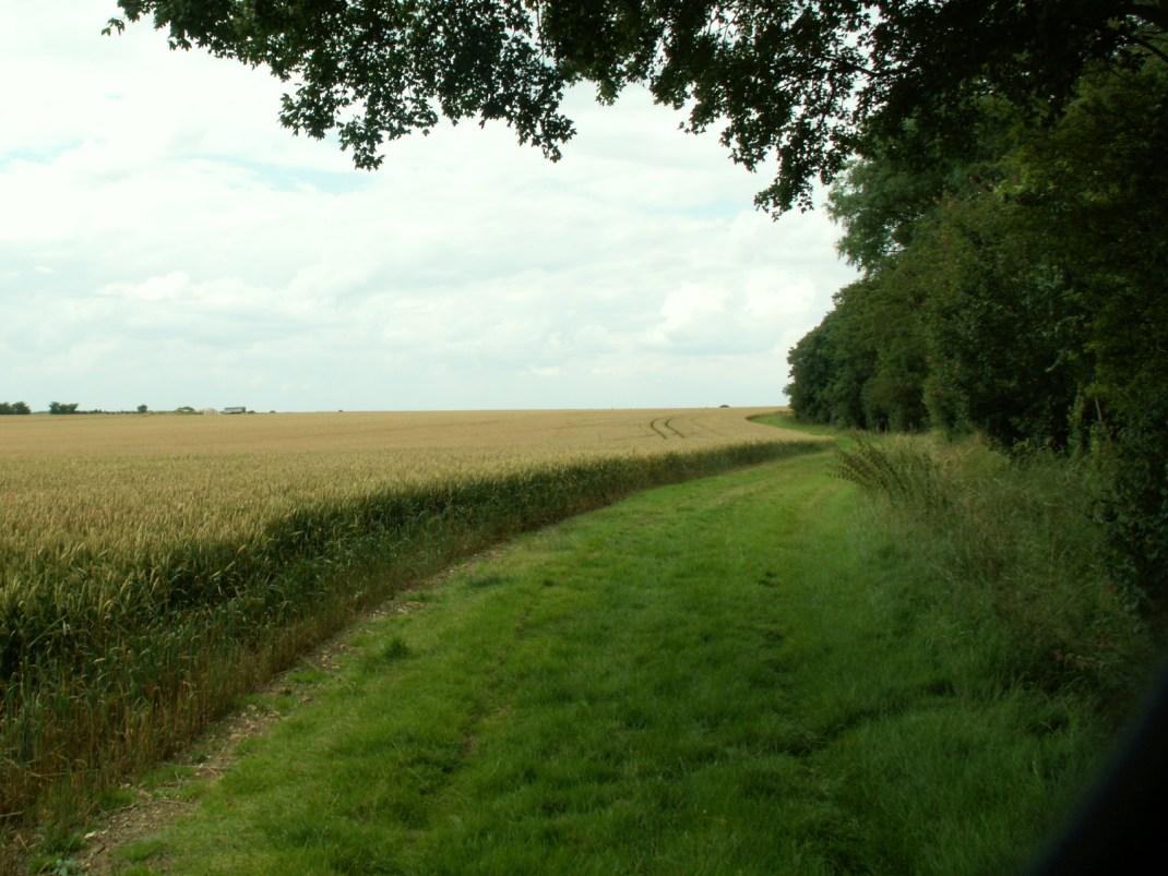 towards Gransden Lodge airfield