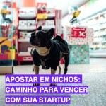 Apostar em nichos: caminho para vencer com sua startup