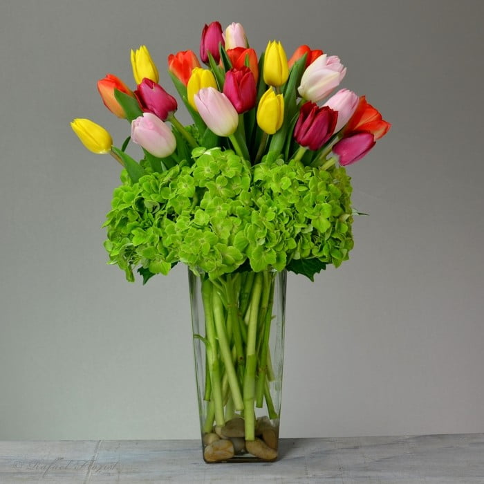 895e009073a5 Valentine's day tulips and white hydrangeas is a perfect valentine gift