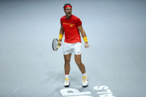 MADRID, SPAIN - NOVEMBER 23: Rafael Nadal of Spain celebrates after winning the first set in his semi-final singles match against Dan Evans of Great Britain during Day Six of the 2019 Davis Cup at La Caja Magica on November 23, 2019 in Madrid, Spain. (Photo by Clive Brunskill/Getty Images for LTA)