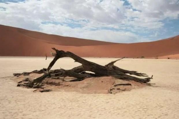 Itinerario tra Sudafrica e Namibia: Dead Vlei