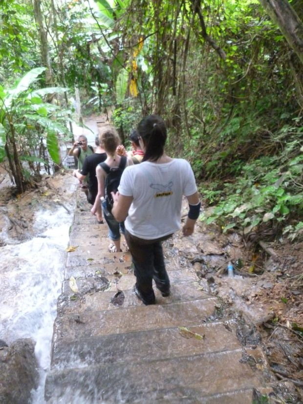 Scendendo verso le Cascate Kuang Si, Luang Prabang, Laos