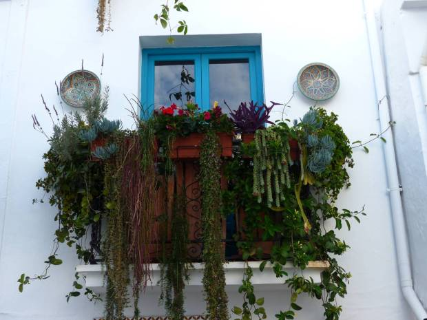 Tour dell'Andalusia: balcone di frigiliana