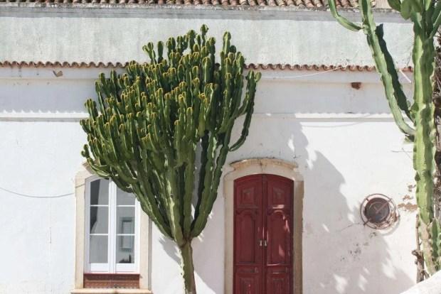 Cosa vedere in Algarve: dettaglio