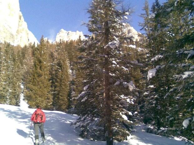 Escursioni con le ciaspole da Cortina: inizia la salita verso il rifugio Dibona