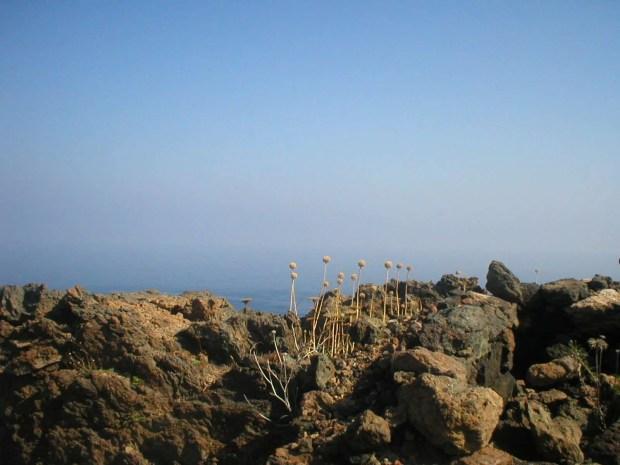 Vacanza a Pantelleria: i colori dell'isola