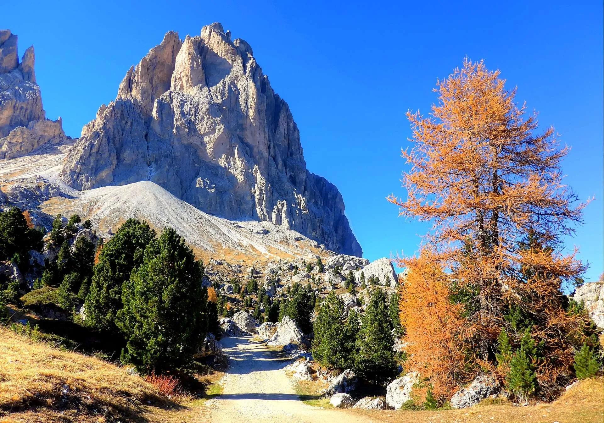 Escursioni in Val Gardena per chi ama camminare: il panoramico giro del Sassolungo