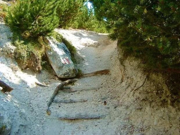 Un particolare del sentiero che sale dalla Vallunga al Rifugio Puez