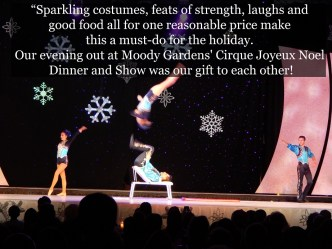 Cirque-Joyeux-Noel-Dinner-and-Show-Quote-14-resized-1