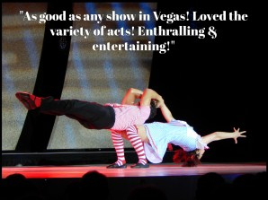 Cirque-Joyeux-Noel-Dinner-and-Show-Quote-4