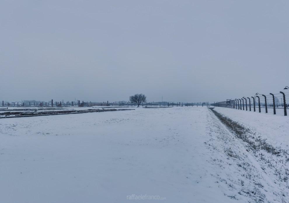 È davvero difficile comprendere le dimensioni del campo di Auschwitz-Birkenau II