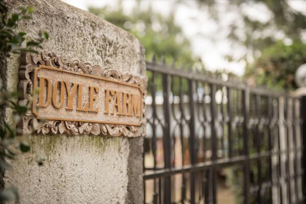 Doyle-Farm-Rafiki-Mwema