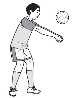 Gambar Passing Bawah Bola Voli : gambar, passing, bawah, TEKNIK, DASAR, BAGIAN, PENGETAHUAN