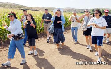 Walk the Farm, cosponsored by OCO Helping Farms Feed Families and Tanaka Farms, has raised thousands of dollars for farmers in Japan. (GWEN MURANAKA/Rafu Shimpo)