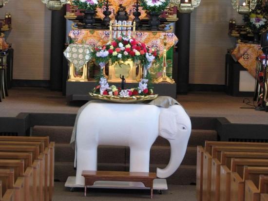 white elephant for web