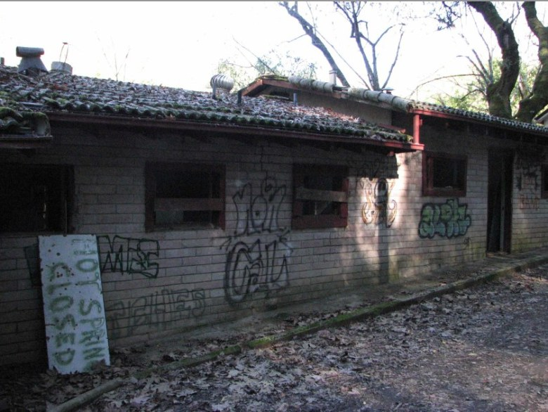 The bathhouses have fallen into disrepair and have also been targeted by vandals.