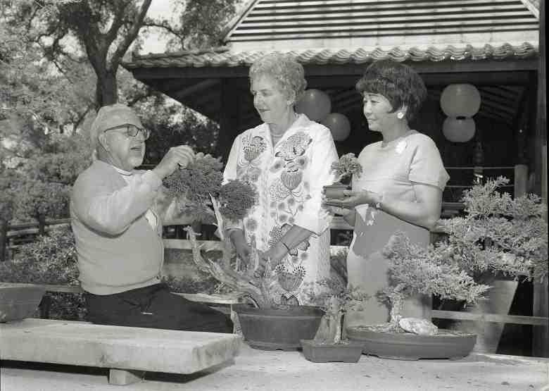 Third annual Bonsai Festival at Descanso Gardens, Sept. 17, 1968. Courtesy of Japanese American National Museum. (Photo by Toyo Miyatake, gift of the Alan Miyatake family)