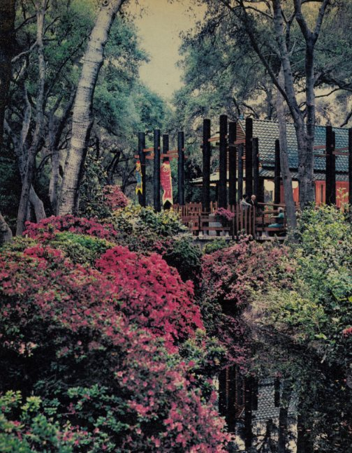 Photo of the Japanese Garden in the Home section of The Los Angeles Times, May 29, 1966. (Courtesy Descanso Gardens)