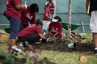 Greater Englewood CDC Clean Up Day with NHS