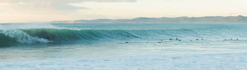 The Surfing is Great. And …