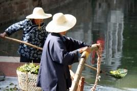 Nettoyage du canal à l'épuisette
