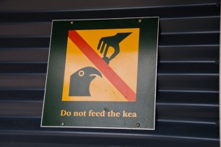 Ne pas nourrir les Kea
