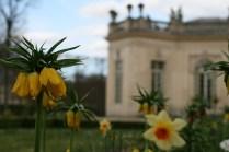 Parterre du Pavillon français