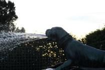 Détail de la Fontaine du Limier abattant un cerf